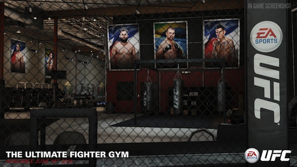 the ultimate fighter gym